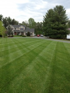 Carroll County Maryland Lawn Care